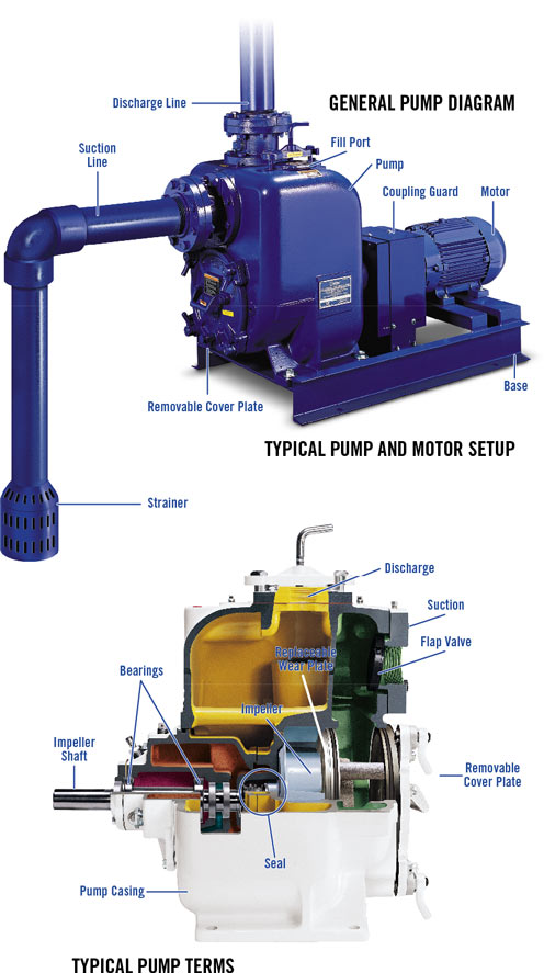 General Pump Diagram, Typical Pump and Motor Setup, and Typical Pump Terms